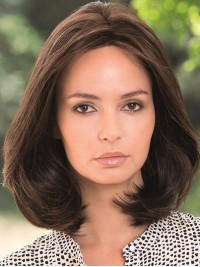 Central Parting Medium Lace Front Brown Straight Remy Human Wigs 14 Inches
